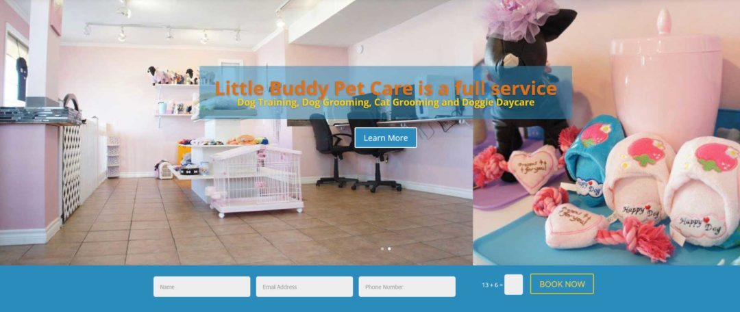 Little Buddy Pet Care